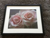 Framed photo print