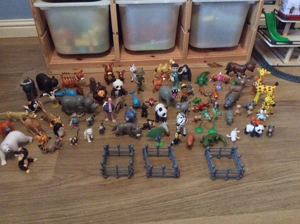 My Zoo Animals Collection In Laurencekirk Aberdeenshire