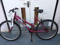 Ladies Vision Campelle Mountain Bike (Used).