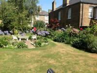 Land scaping/Gardening/Tree surgeon/Lawn mowing/Clearance/Designing/Bush Trim/Trimming