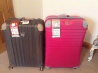 Large luggage cases