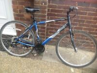 Adults Alloy Crosstrax Hy Brid Cycle 21 speed