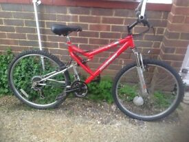 Adults Dual Suspension mountain bike 15 Speed