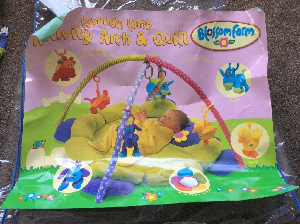 ELC Blossom Farm Baby Gym. Excellent condition.