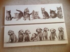 Kittens and puppies black and white canvas prints