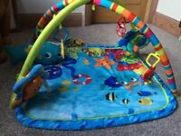Baby Einstein Neutical Friends play mat and gym