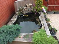 Blagdon pre formed pond & accessories