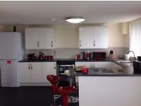 Fully furnished brand new 2 bedrooms apartment to Share