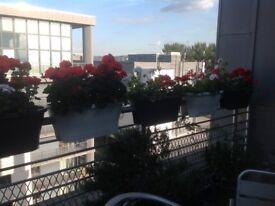 Elno Balcony Planters