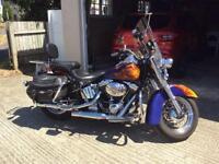 Harley- Davidson softail FLSTCI classic