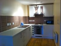 Modern 1 bed flat 'AVAILABLE IMMEDIATELY '