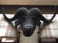 Stunning Wall Art Buffalo Head, metal frame decorated with beads