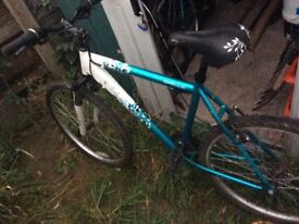 Girls Apollo Mountain bikes x2