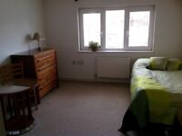 Spacious double sized ensuite room for single person in Twickenham/Isleworth area