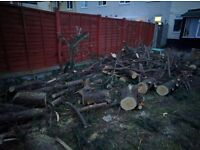 FREE Logs - to collect from Tipton