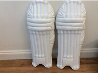 Unbranded test quality batting pads