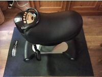 Bodi-Tek Ride electric exercise horse