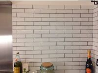 100 white brick / metro / architect tiles