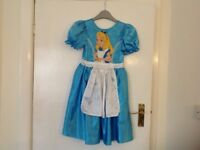 Disney Aurora Dress