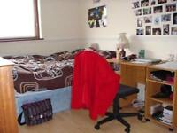 **A Nice Double Room is Ready to Rent in Mile End**(zone-2)