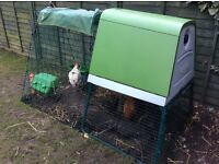 Omlet Eglu Go UP Chicken Coop (+ 2 laying chickens)