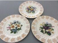 Myott Meakin plates