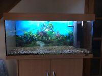 Aquarium Jewel Rio 180 with stand/cabinet