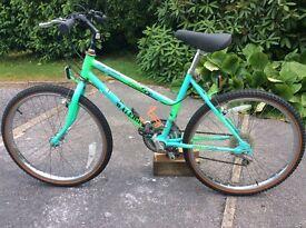 Raleigh Lizard All Terrain cycle