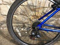 Apollo XC ladies mountain bike.
