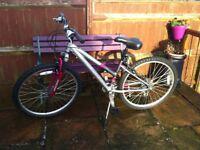 Girls / Ladies Bike - Raleigh Freeride AT10