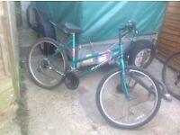 Ladies Desire Mountain Bike 15 Speed