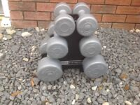 Dumbbell set 15.8 kg pro fitness