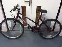 Ladies - Stone Creek - Epic XL427 - Purple Bike - (Used)