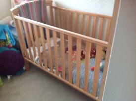 Cot in beech with mattress