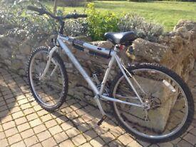 Raleigh Manta Ray cycle