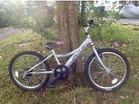 Townsend Childs mountain bike