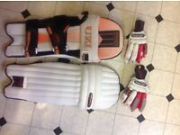 Cricket pads and gloves junior size VGC