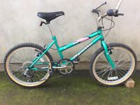 Apollo Medusa 6 speed childrens bike