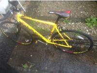 Road bike/road racer for sale
