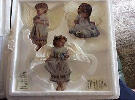 Bradford edition heavens little angels