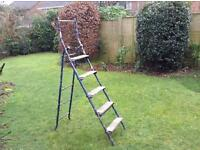 Two way step ladders