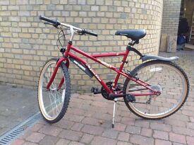 Apollo Mountain Unisex Bike
