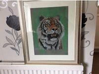 Tiger portrait (pastel pencils)