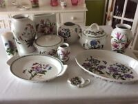 Collection of Portmeirion (Botanic garden) pottery