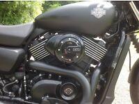 Harley-Davidson XG750 Street. Beautiful 'Dark Custom' Harley in denim (matt) black.