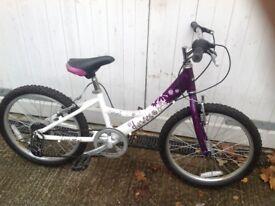 """Lovely girls aluminium Dawes bike 20"""" wheels"""