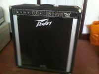 Peavey TNT 130 Bass Amplifier (combo - 1x15Black Widdow Driver)