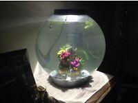 30 litre biorb aquarium and accessories