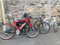Canondale mountain bikes and specialised allez road bike for sale