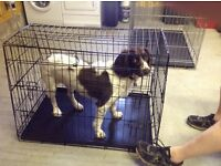 Dog crate (collapsible) tapered to fit hatchback car